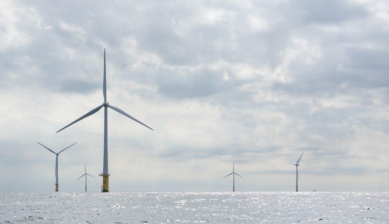 Rapport synthétique à propos du projet de parc éolien en mer face à Dunkerque
