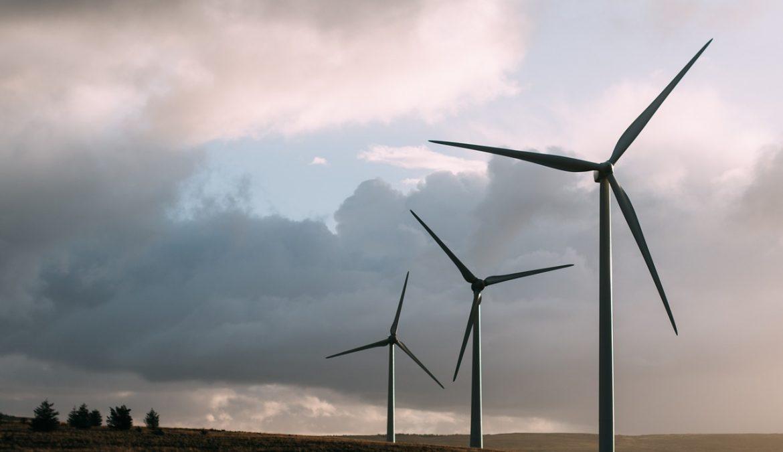 Éoliennes ; le vent de la discorde écologique